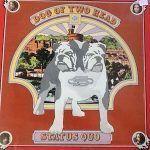status quo-dog-rock internacional-1-vinilo coleccion