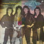 fate-rock internacional-6-vinilo coleccion